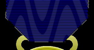… la città di Messina ha ricevuto ben tre medaglie d'oro al valore?