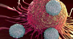 La nuova scoperta nella lotta al cancro. Orgoglio italiano (fuggito) su Nature