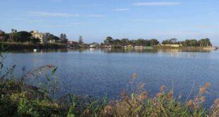 Il mito sepolto dei laghi di Ganzirri. Il tempio, la mitilicoltura e la flora selvatica