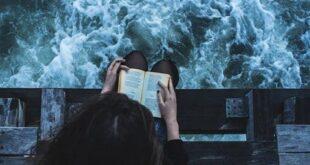 Romanzi da leggere prima di morire (o comunque prima di avere 26 anni)