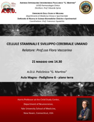 "Seminario della Prof.ssa Vaccarino, Harris Professor al Child Study Center di New Haven @ Aula Magna del Padiglione G (Torre Biologica) dell'A.O.U ""G.Martino"""
