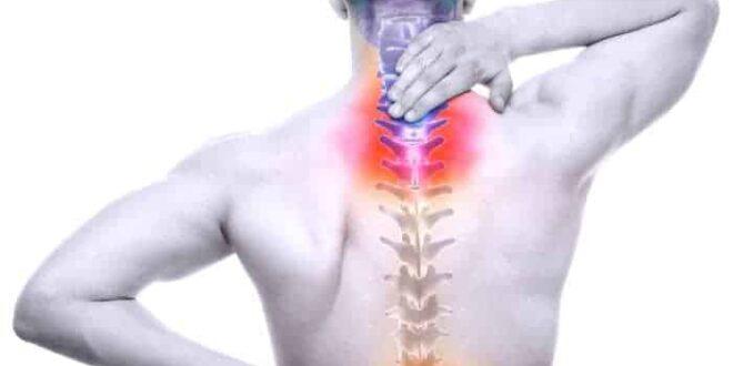 Le nuove frontiere della chirurgia: il disco intervertebrale bio-ingegnerizzato