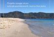 Progetto spiagge sicure: si cercano figure interessate alla realizzazione di un'app che gestisca la balneazione