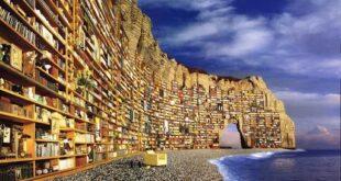 5 grandi viaggi letterari: l'estate a portata di libro