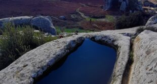 Argimusco: un posto magico immerso nella natura