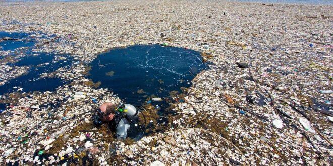Plastica e natura: un binomio imperfetto
