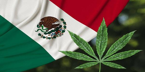 Corte Suprema messicana: il consumo di marijuana sarà depenalizzato